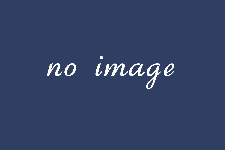 DigiPressのカスタマイズ方法 (カスタマイザー対応テーマ)
