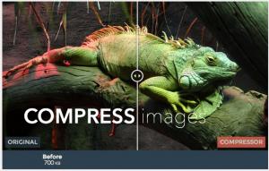 JPG, PNG, GIF, SVG画像を無劣化で圧縮してくれるサービス「Compressor.io」